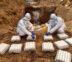 Bird Flu : Culling Operation concludes in SAS Nagar